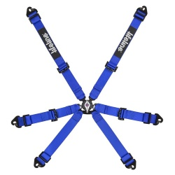 Lifeline Becketts 6 Point Harness
