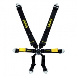Schroth Enduro 6pt Harness